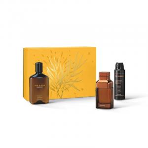 Kit Presente The Blend: Eau de Parfum 100ml + Antitranspirante 75g + Shower Gel 250g