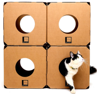 Labirinto 4 Cubos Gatomoderno Para Gatos