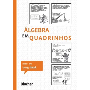 Livro Álgebra em Quadrinhos Capa Comum - Larry Gonick